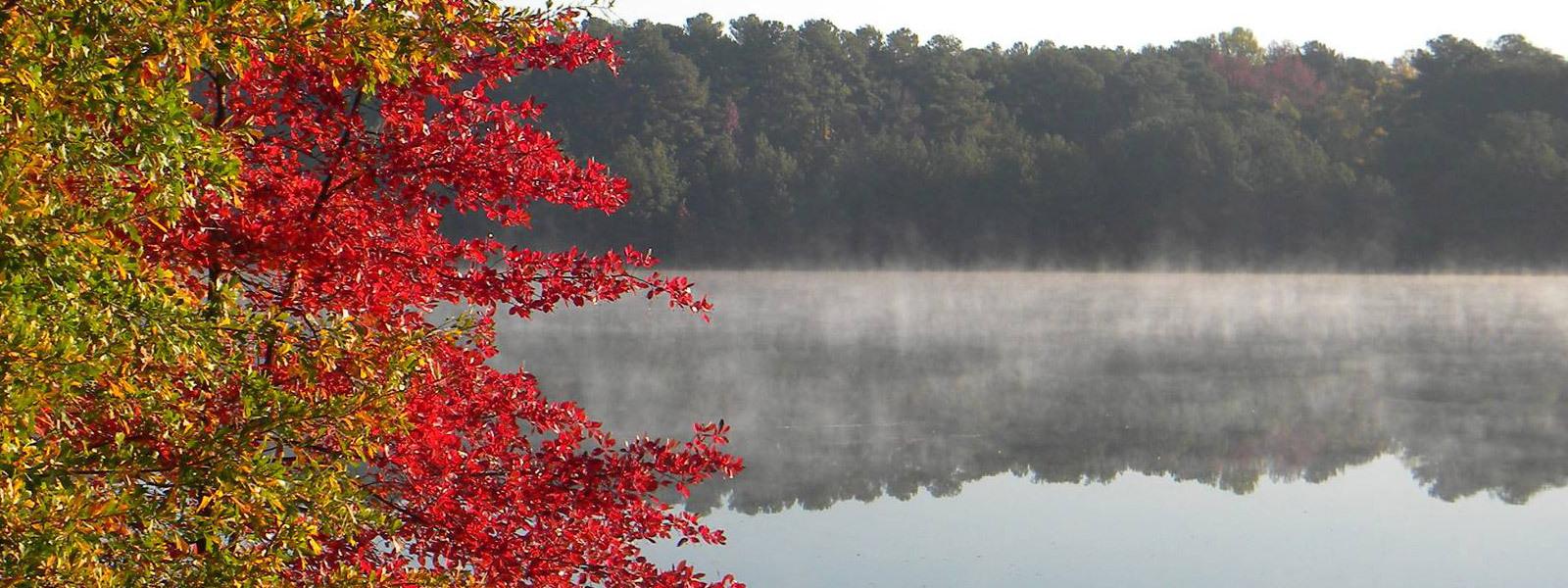 Lake Photo 5